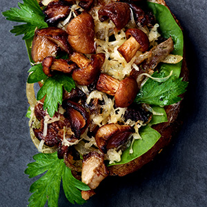 Caramelized Onion Mushroom Crostini